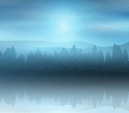 Winter forest landscape background Stock Image