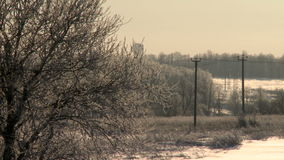 Winter forest landscape with a balloon flying low stock video