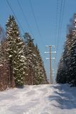 Winter forest landscape with high-voltage line Stock Image