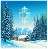 Winter forest landscape. Stock Images