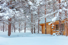 Winter forest Landscape with small wooden house Royalty Free Stock Image