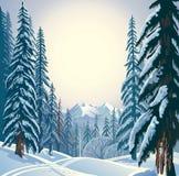Winter forest landscape. Stock Photo
