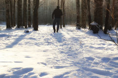 Winter forest man Stock Photo