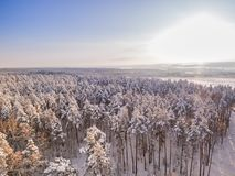 Winter forest and meadow. Aerial view. Sunny frosty day and snowfall. Field and frozen lakes on background stock photography