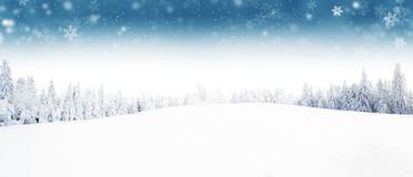 Winter forest and meadow landscape with snow flakes. Winter landscape with snow flakes. Natural background with snowy landscape Royalty Free Stock Images