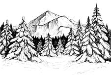 Winter forest in mountains, sketch. Vector hand drawn illustration. Winter forest in mountains, sketch. Black and white vector illustration of snowy firs and Royalty Free Stock Photos