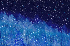 Winter forest at night Stock Photos