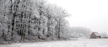 Winter Forest and Old Hut. An old house stands near a forest. Fresh snow covers the landscape royalty free stock photos