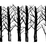 Winter forest pattern. Vector seamless pattern with hand drawn winter trees made in heavy graphic style. Beautiful ink drawing Stock Photo