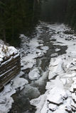Winter forest river Stock Photos