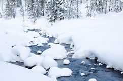 Winter forest river Royalty Free Stock Photography