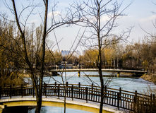 The Winter Forest and River, Beijing Royalty Free Stock Images