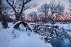 Winter forest on the river. Colorful landscape at sunset Stock Photo