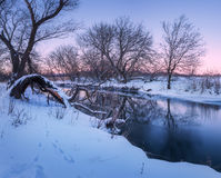 Winter forest on the river. Colorful landscape at sunset Royalty Free Stock Images