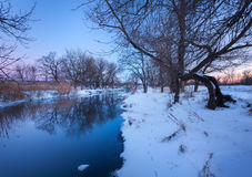 Winter forest on the river. Colorful landscape at sunset Royalty Free Stock Photography