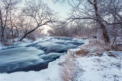 Winter forest. River Krinka (Ukraine Royalty Free Stock Photo