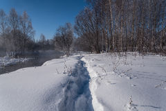 Winter forest river snow water Stock Photography