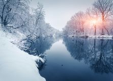 Winter forest on the river at sunset. Colorful landscape with snowy trees. Frozen river with reflection in water. Seasonal. Snow covered trees, lake, sun and stock image
