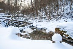 Winter, forest and river royalty free stock photo