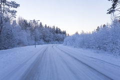 Winter forest with road covered with snow Royalty Free Stock Images