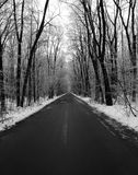 Winter forest road Stock Photography