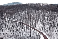 Winter forest and Road. Top view. Aerial View Royalty Free Stock Image