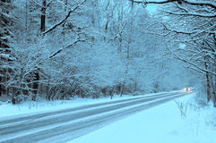 Winter forest. Road in twilights Royalty Free Stock Photo