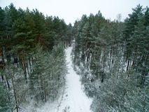 Winter forest and road. View from above. The photo was taken with a drone. Pine and spruce forest with a road in the snow Stock Photography