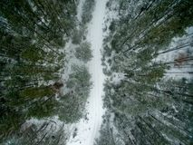 Winter forest and road. View from above. The photo was taken with a drone. Pine and spruce forest with a road in the snow Royalty Free Stock Image