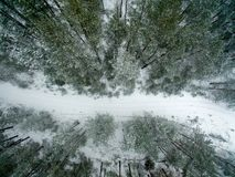Winter forest and road. View from above. The photo was taken with a drone. Pine and spruce forest with a road in the snow.  Royalty Free Stock Images