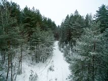 Winter forest and road. View from above. The photo was taken with a drone. Pine and spruce forest with a road in the snow.  Stock Photography