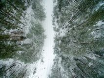 Winter forest and road. View from above. The photo was taken with a drone. Pine and spruce forest with a road in the snow Royalty Free Stock Images