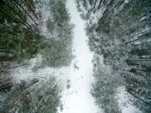 Winter forest and road. View from above. The photo was taken with a drone. Pine and spruce forest with a road in the snow.  Stock Photo