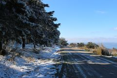 Winter forest and rout royalty free stock image