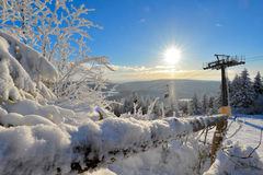 Winter Forest scenery frosty coldly. Snow-covered winter scenery frosty coldly stock photography