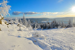Winter Forest scenery frosty coldly. Snow-covered winter scenery frosty coldly stock photos