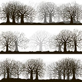 Winter forest silhouettes lanscapes Royalty Free Stock Photo