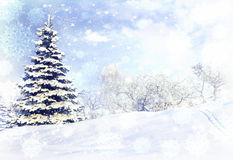 Winter forest after a snow storm blizzard. Royalty Free Stock Photo