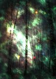 Winter forest space design royalty free stock photo
