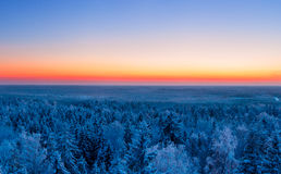 Winter forest and sunset Royalty Free Stock Photography