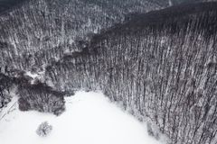 Winter forest Top view. Snowy winter forest aerial. Aerial View Royalty Free Stock Photos
