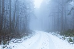 Winter forest track in Fog. A Winters woodlands in the county of Nottinghamshire during a freezing cold spell of fog and mist with a covering of snow Royalty Free Stock Images