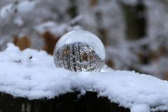 Winter forest through a transparent glass ball.  stock photography