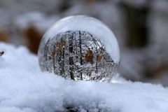 Winter forest through a transparent glass ball.  royalty free stock image