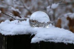 Winter forest through a transparent glass ball.  stock photos