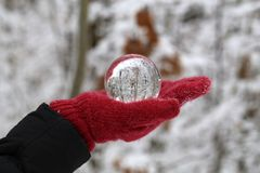 Winter forest through a transparent glass ball.  royalty free stock images