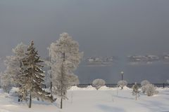 Winter forest with trees covered snow on river background. White frost park landscape. stock photography