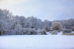 Unbelievable winter scene with snow covered forests. Winter forest of trees poured with snow that like fur shelters the mountain hills covered with snow stock images