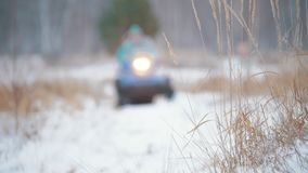 Winter forest. Two people riding a snowmobile. A frozen herb on the foreground. Wide shot stock footage