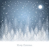 Winter forest under the moon on Christmas postcard background. Royalty Free Stock Photography